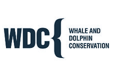 WDC, Whale & Dolphin Conservation